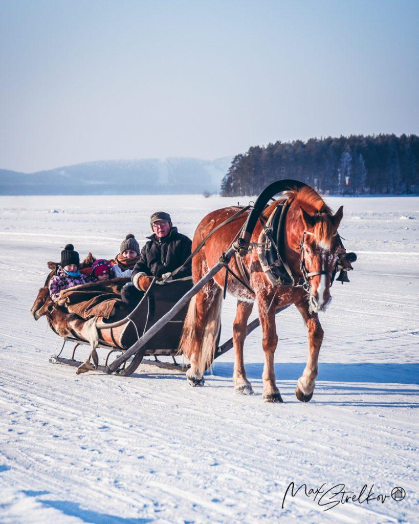 Horse-sleigh in North Karelia