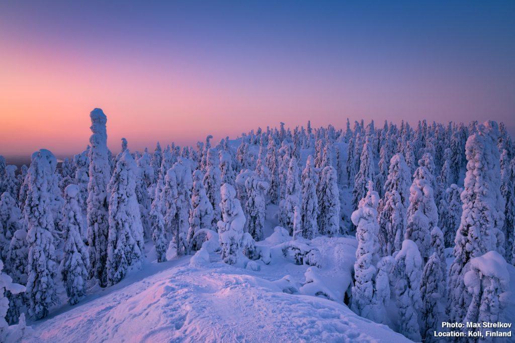 Winter trails in National park Koli