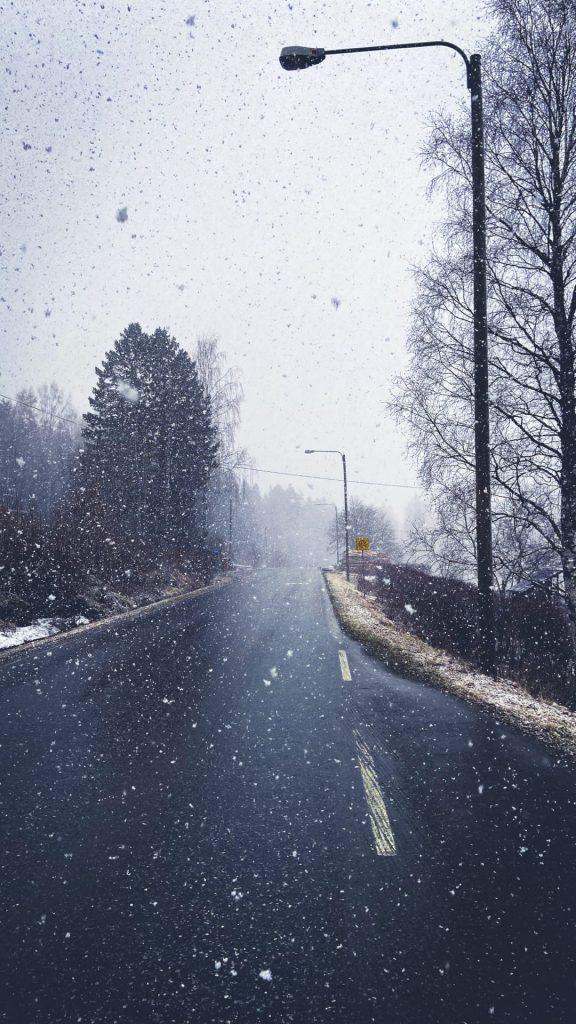 Курьезы природы Финляндии